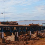 Saltus - Aserradero Victoria Maderas (12)