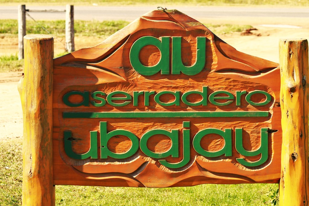 Aserradero Ubajay (2)